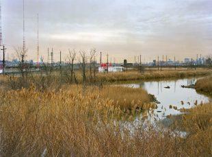 Matt Gunther Photographer Overview Meadowlands. Probable Cause. Matt Gunther