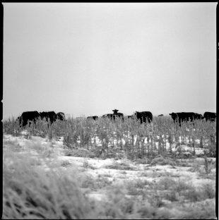 Matt Gunther Photographer Native Americans I-10.jpg
