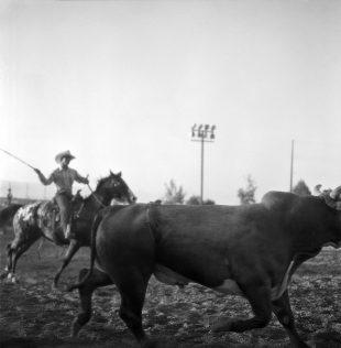 Matt Gunther Photographer Black Cowboys lackCowboys-insta.jpg