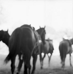 Matt Gunther Photographer Black Cowboys c-21.jpg