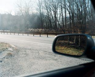 Matt Gunther Photographer Landscape andscape_13.jpg