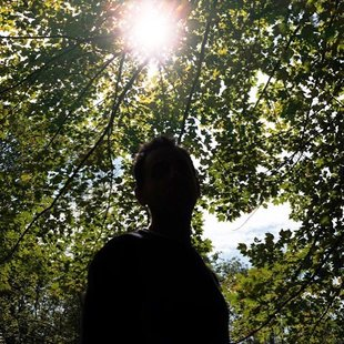 #shadows #fall